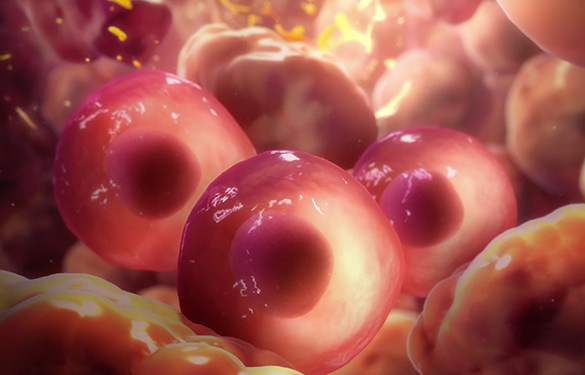 <p>Controlling cancer cell migration</p>